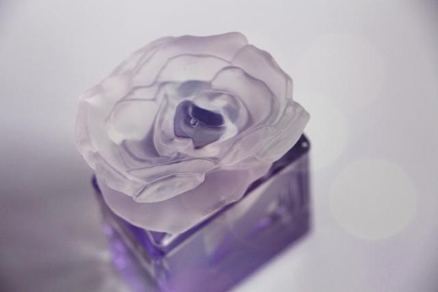 kenzo couleur violet 12
