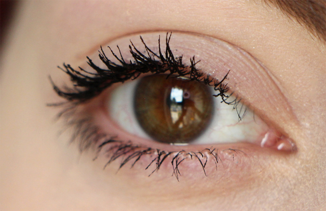 too faced mascara eye