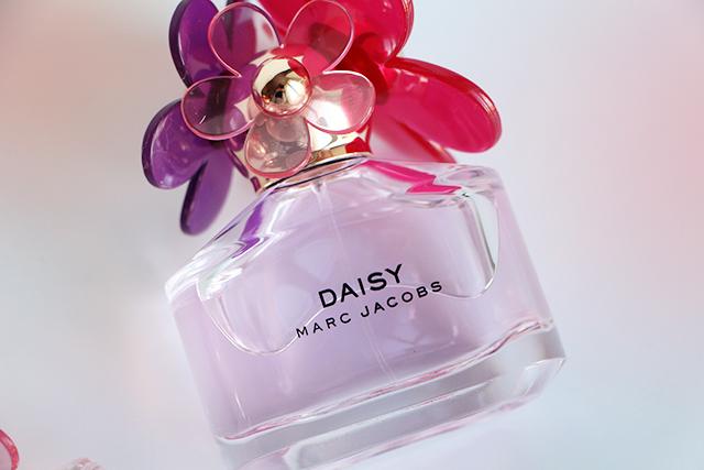 daisy sorbet81
