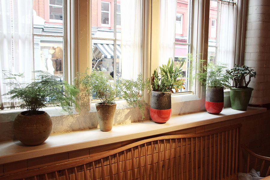 chanel plantes